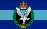 Army Air Corps Large Flag - 5' x 3'